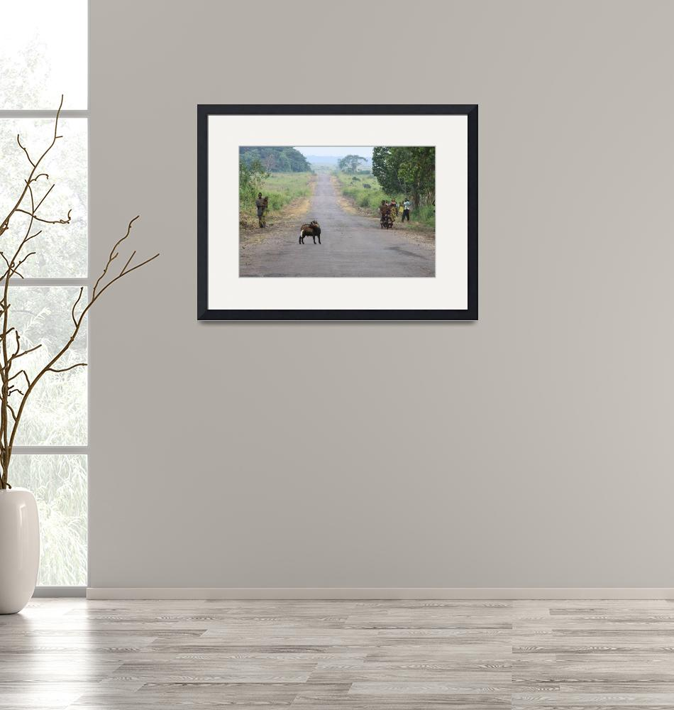 """""""Road in Congo""""  by andreea_gerendy"""