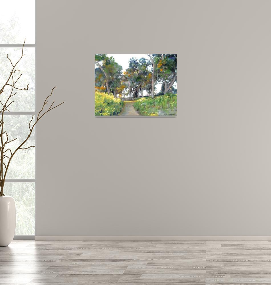 """Meadow in Balboa Park""  (2011) by RDRiccoboni"