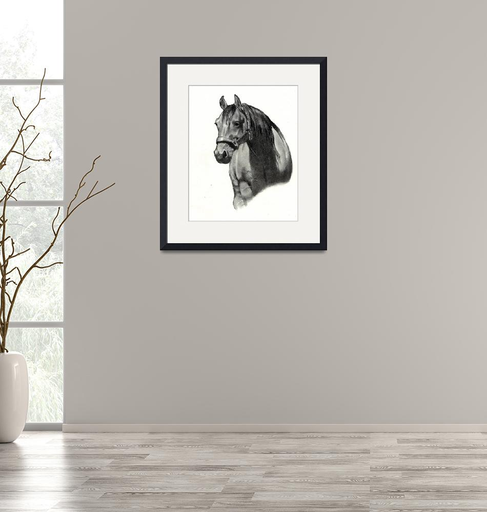 """Horse: Front View""  (2009) by joyart"