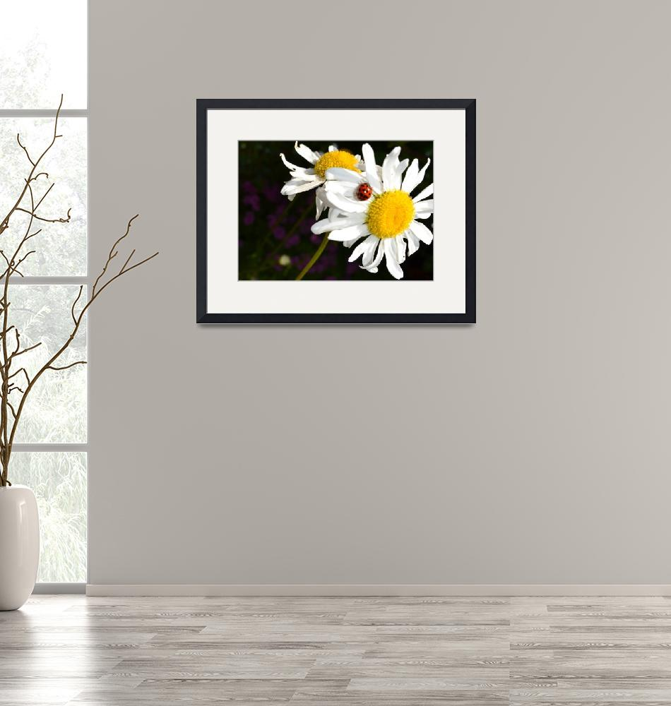 """""""The Daisy and the Ladybug""""  (2011) by PatriciaSanders"""
