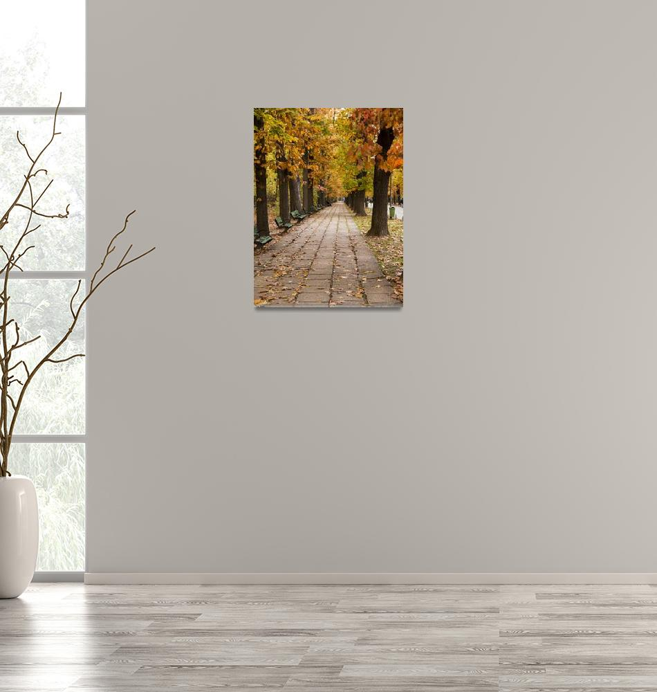 """Bucharest Autumn Stroll""  (2017) by raetucker"