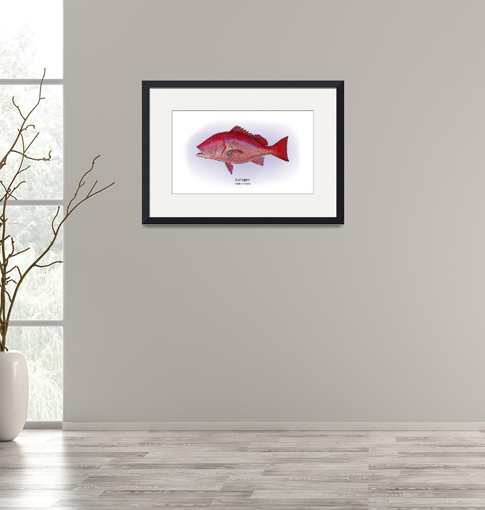 """Red Snapper""  by RalphMartens"