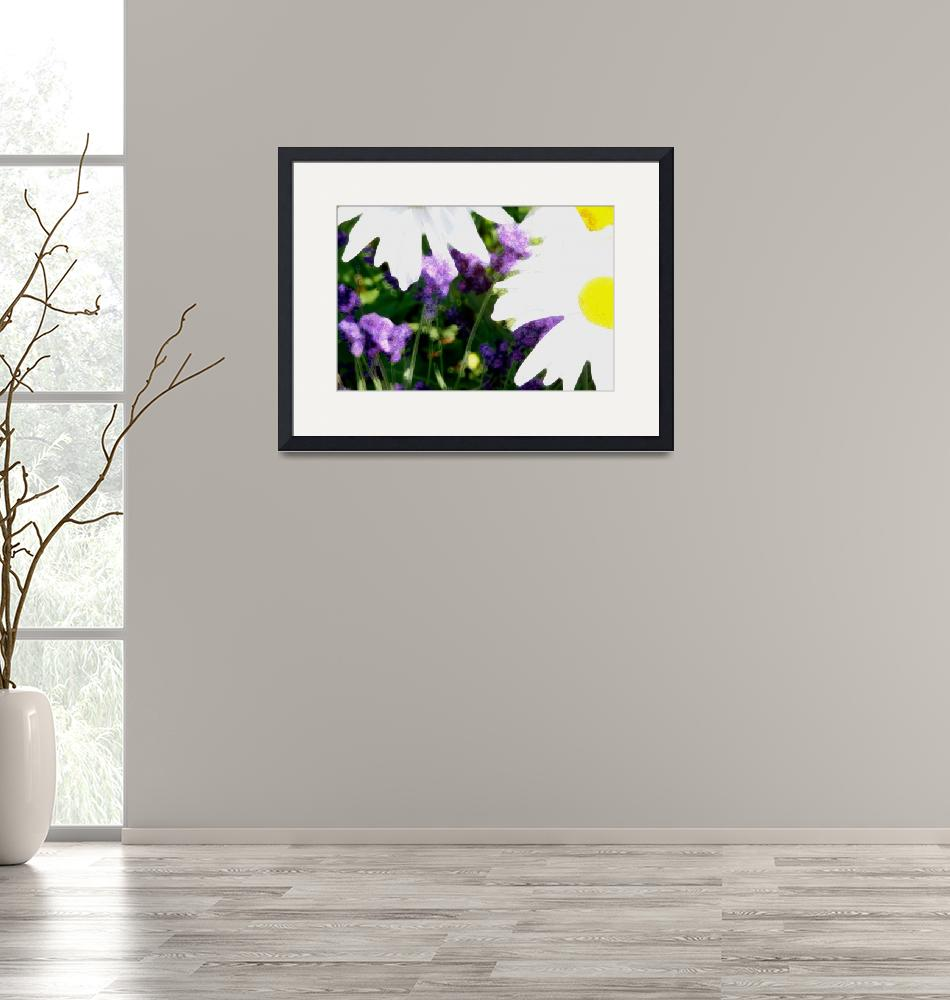 """""""Daisies & Lavender""""  by OutsideShooter"""