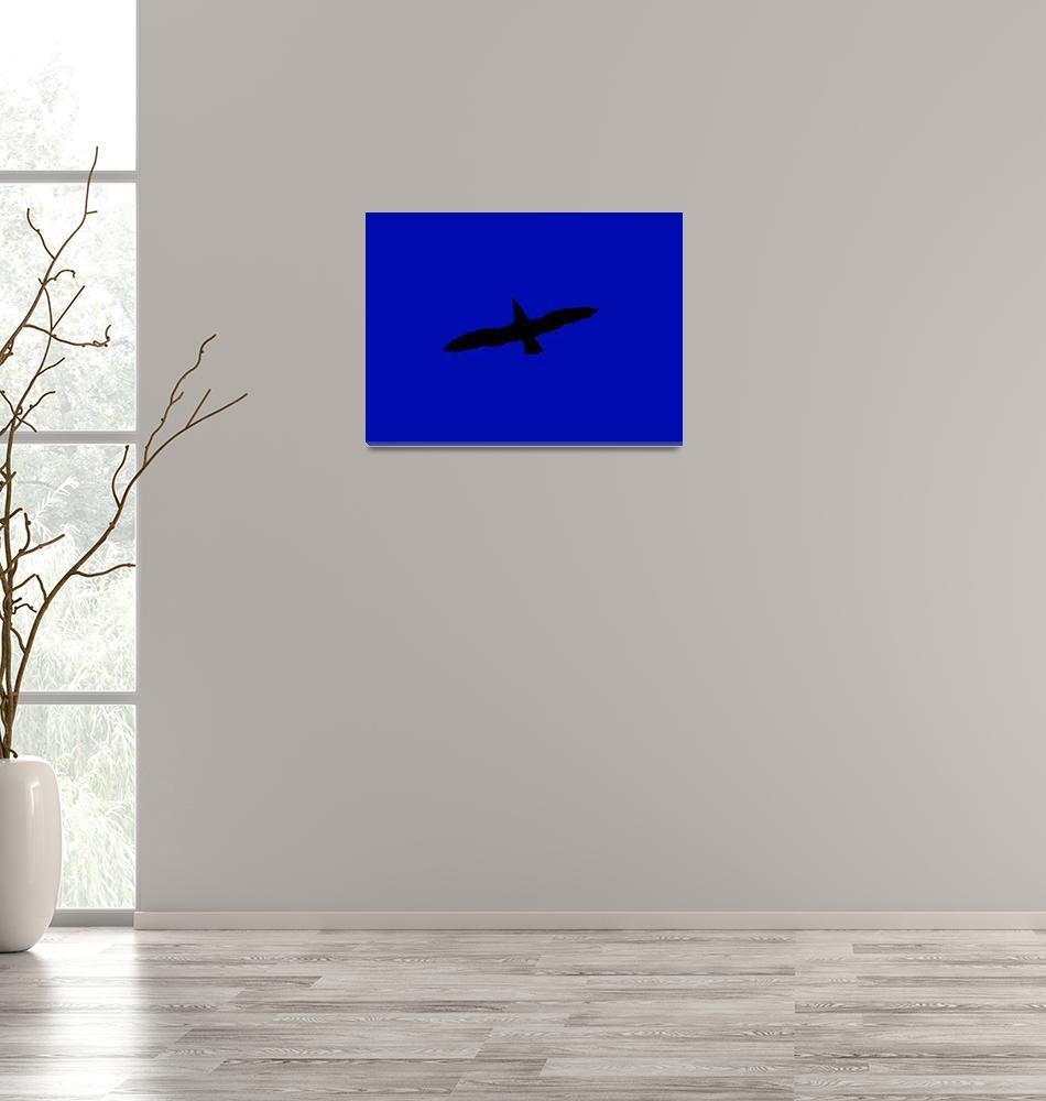 """""""Flying Bird - Black & Blue""""  (2011) by ChainsawNecktie"""