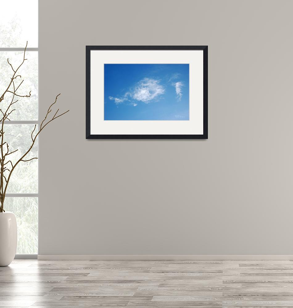 """""""Cloud Fish Contemplating Whether to Bite Photo""""  (2011) by catnip009"""