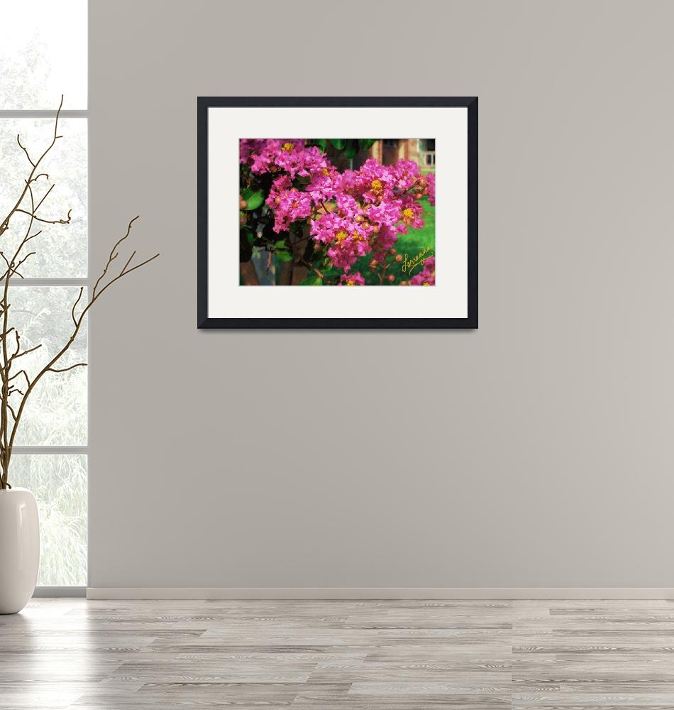"""""""Crepe Myrtle""""  (2008) by aglaeafinearts"""