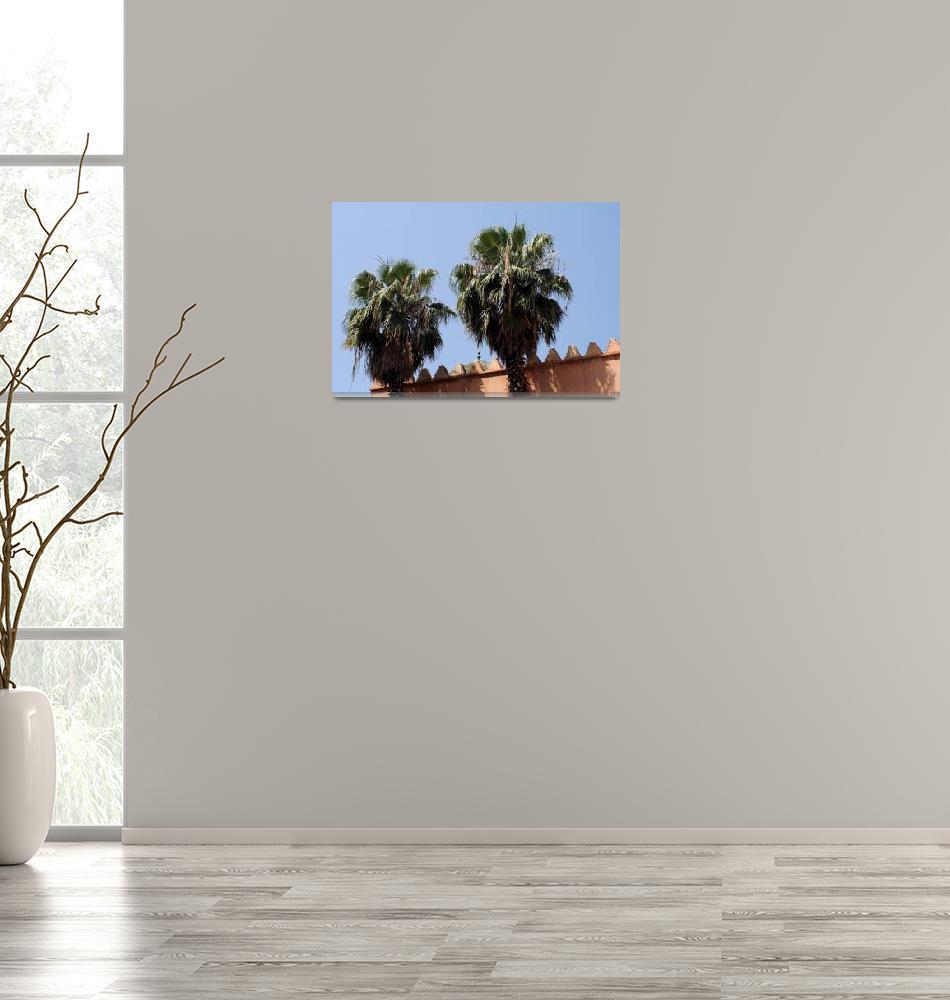 """""""Moroccan Palms 2""""  by rhallam"""