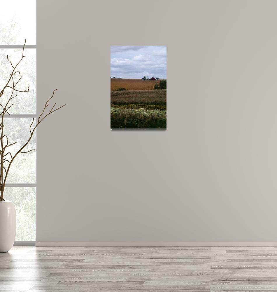 """""""Midwest Field, Dee Oberle""""  (2007) by GypsyChicksPhotography"""