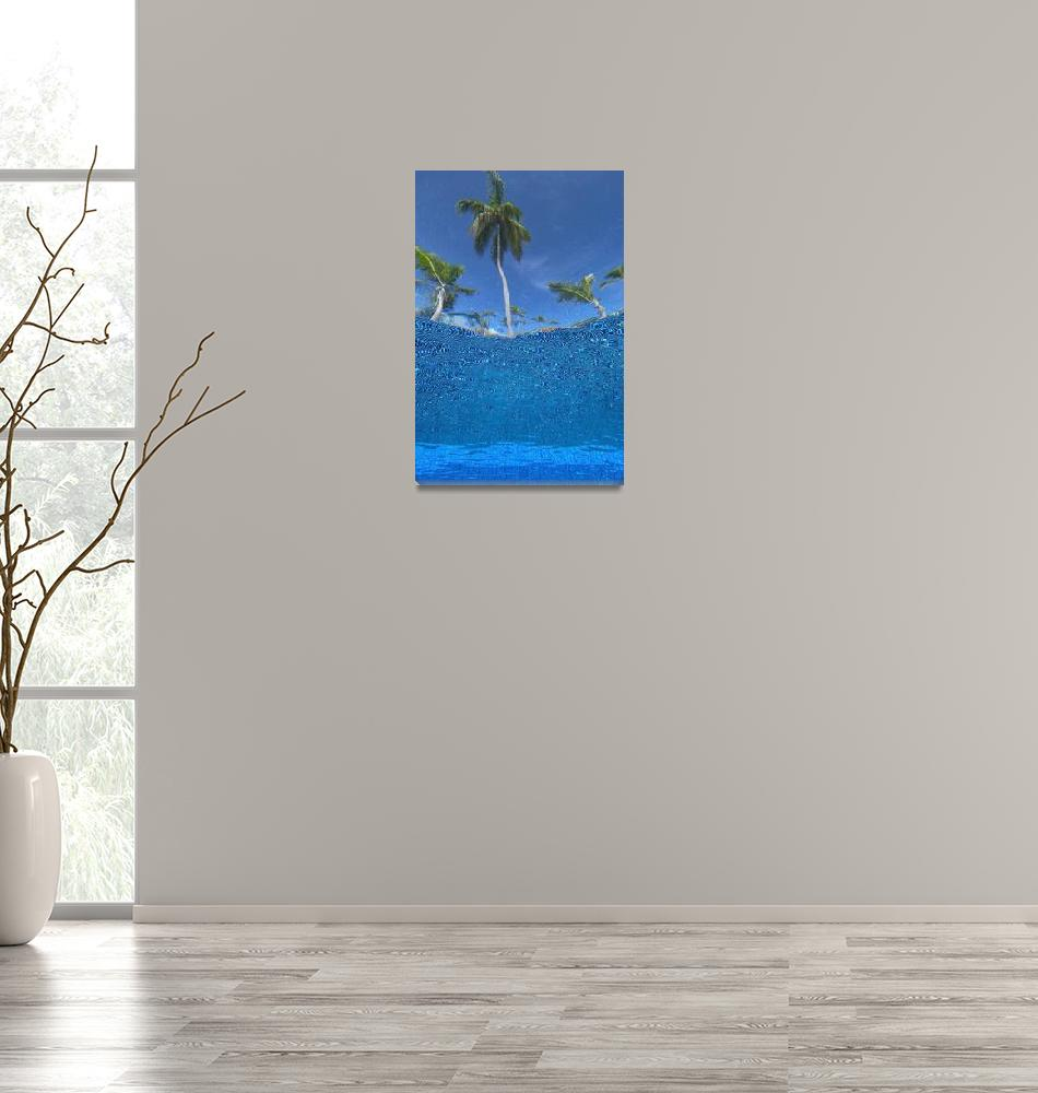 """""""Looking Up At Palm Trees From Underwater In Swimmi""""  by DesignPics"""