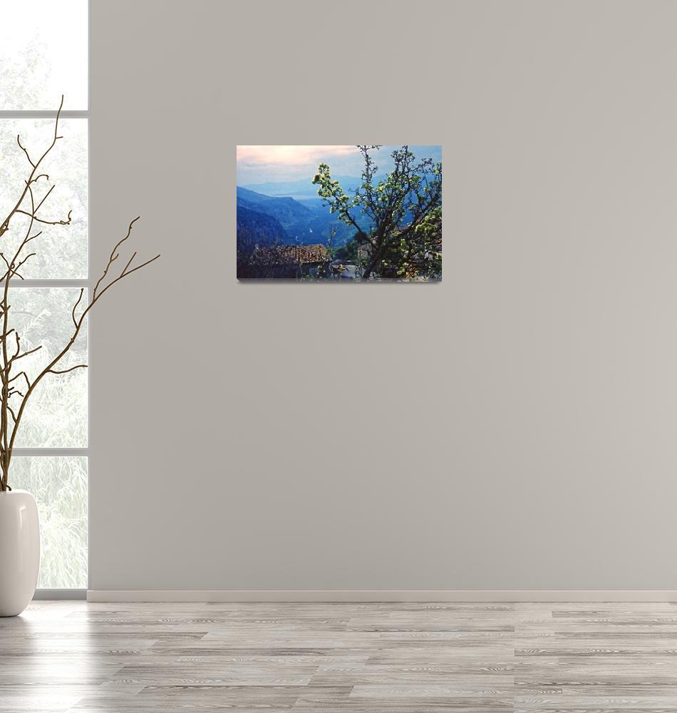 """Spring Blossoms, Delphi, Greece 1960""  (1960) by PriscillaTurner"