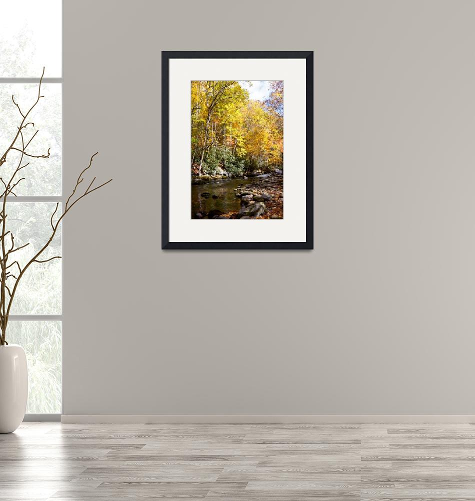 """""""Autumn On The Little River""""  by Lorraine_Sommer"""