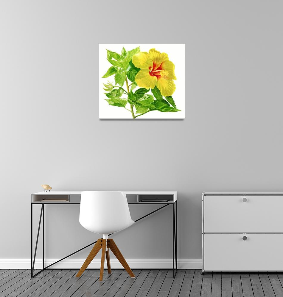 """Yellow Hibiscus Flower""  (2013) by Pacific-NW-Watercolors"