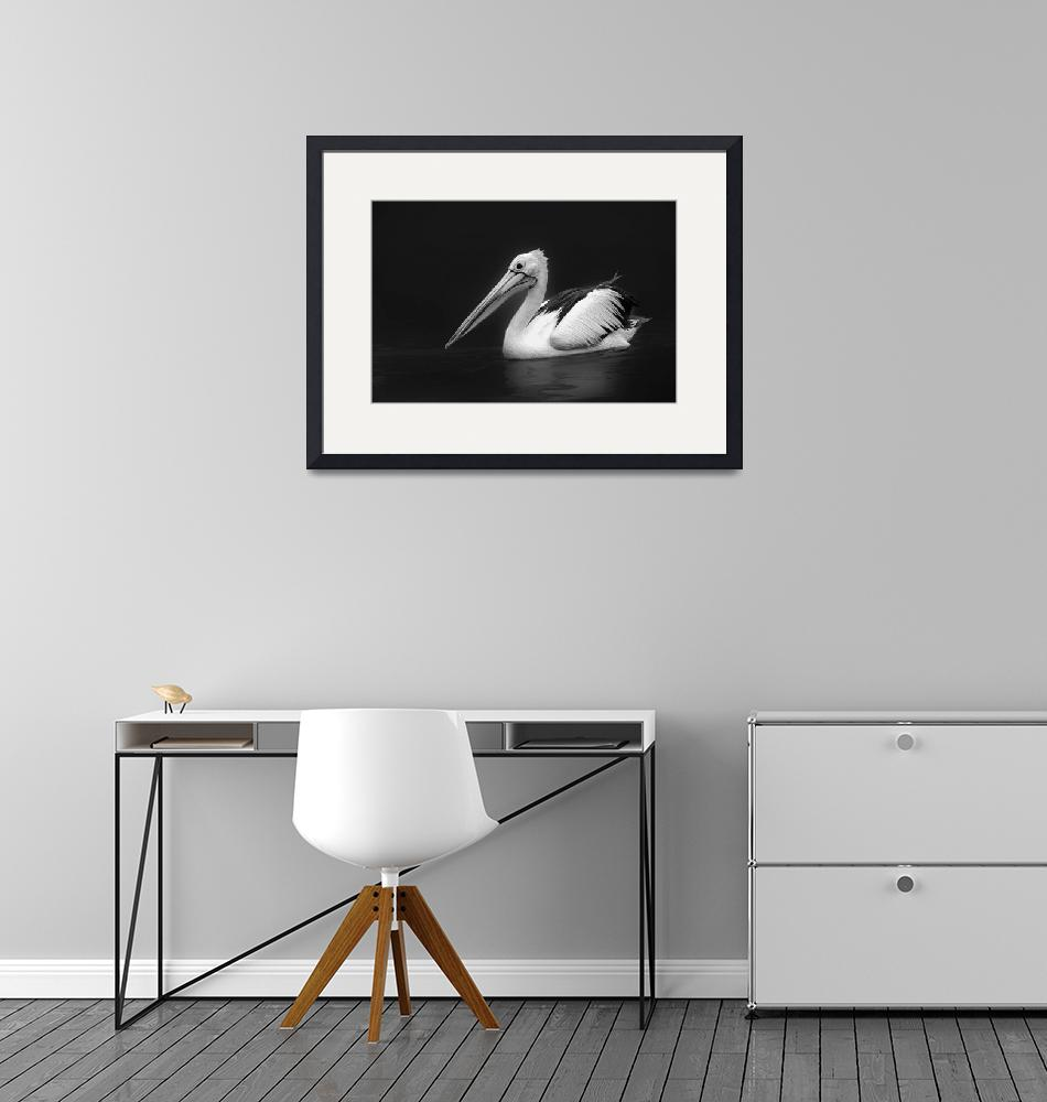 """""""Pelican 1""""  (2016) by Charuhas"""