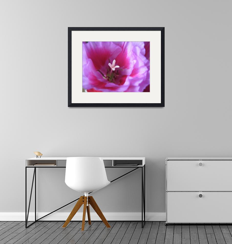 """""""Flower within a Flower""""  by kimleedesigns"""