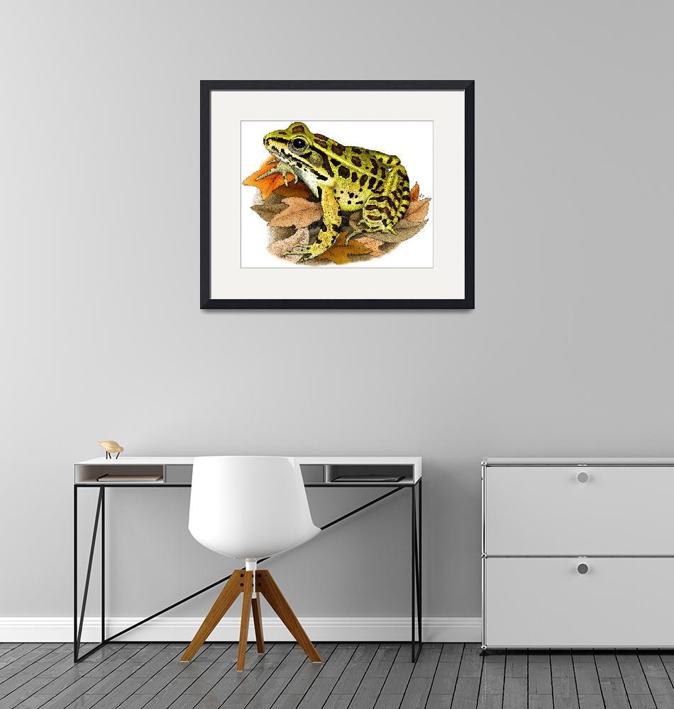 """Northern Leopard Frog""  by inkart"