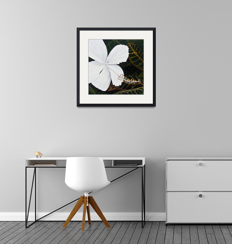 """White Hibiscus""  (2013) by monicadowns"