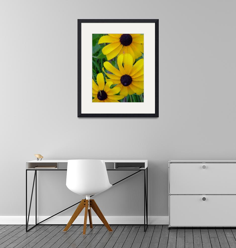 """""""Black-eyed Susans with Inchworm""""  (2010) by bleij50"""