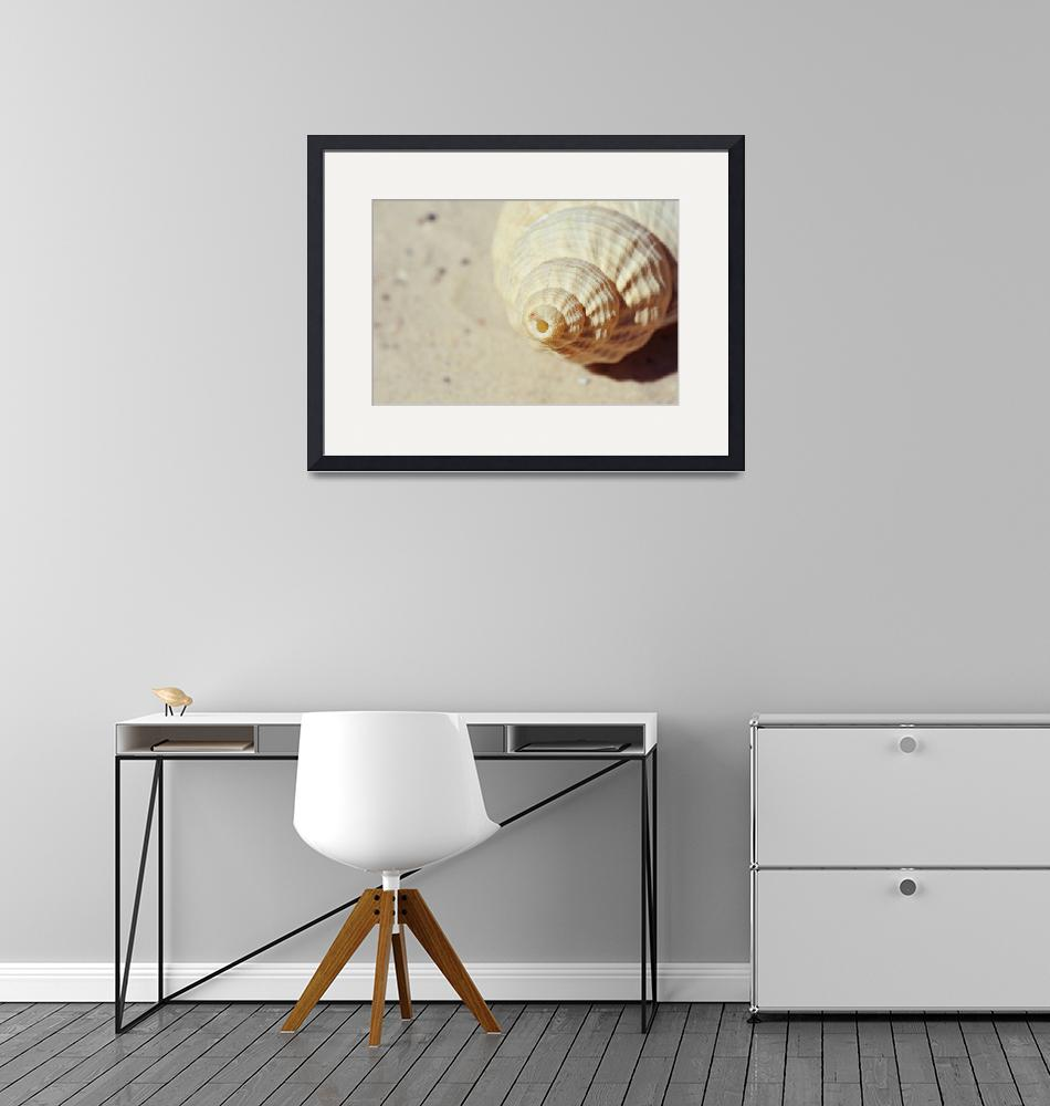 """""""shell abstract""""  (2011) by gabii40"""