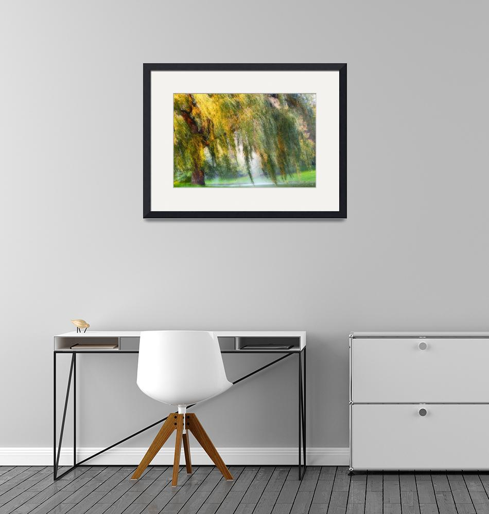 """Weeping Willow Tree Meditation Wall Art Print""  (2008) by PhotographsByCarolFAustin"