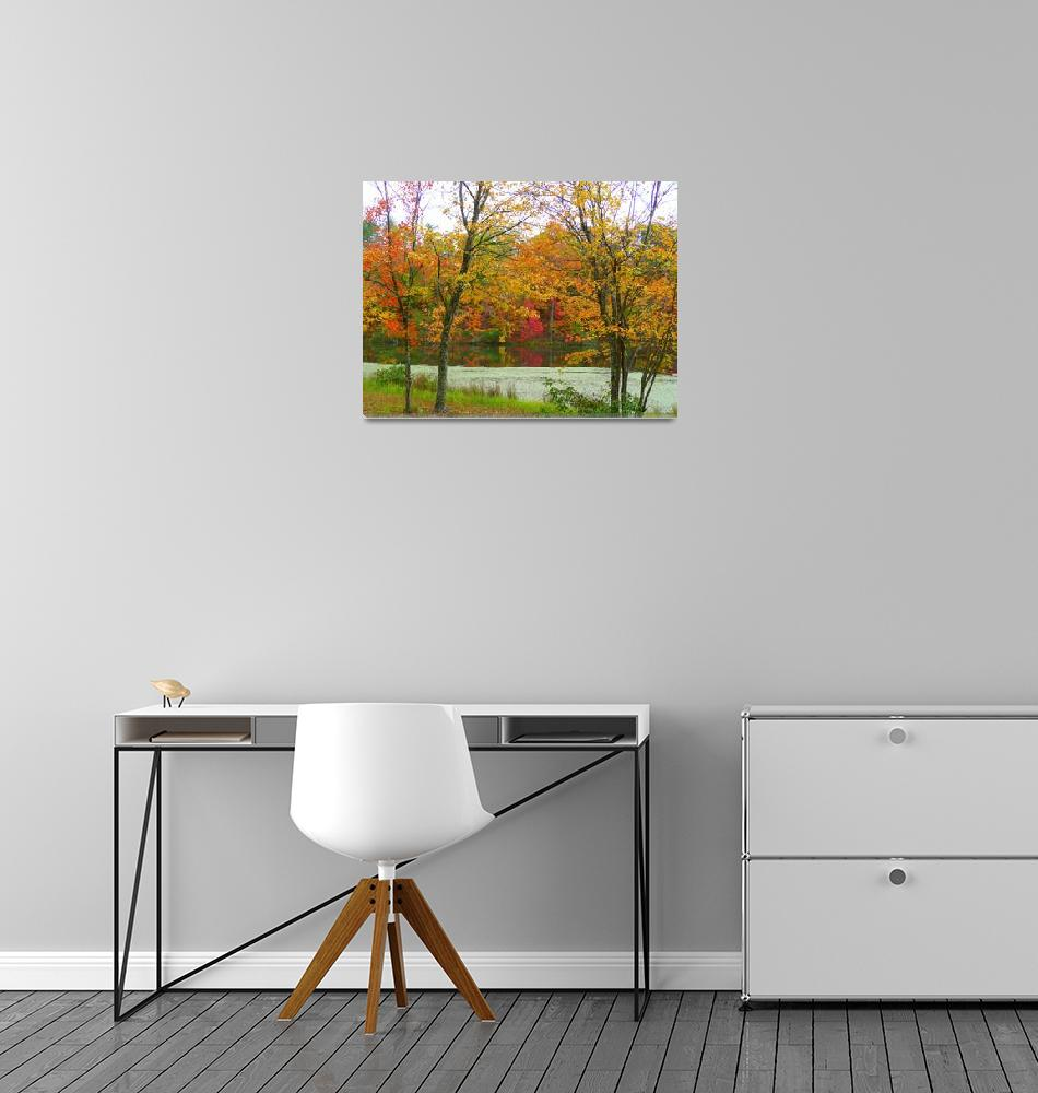 """Autumn Reflections At Turkey-Foot Lake""  (2012) by photographybydonna"