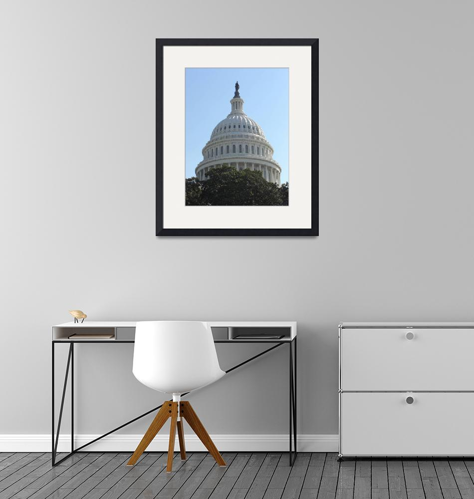 """The Dome of the US Capital""  by jeff-the-intern"