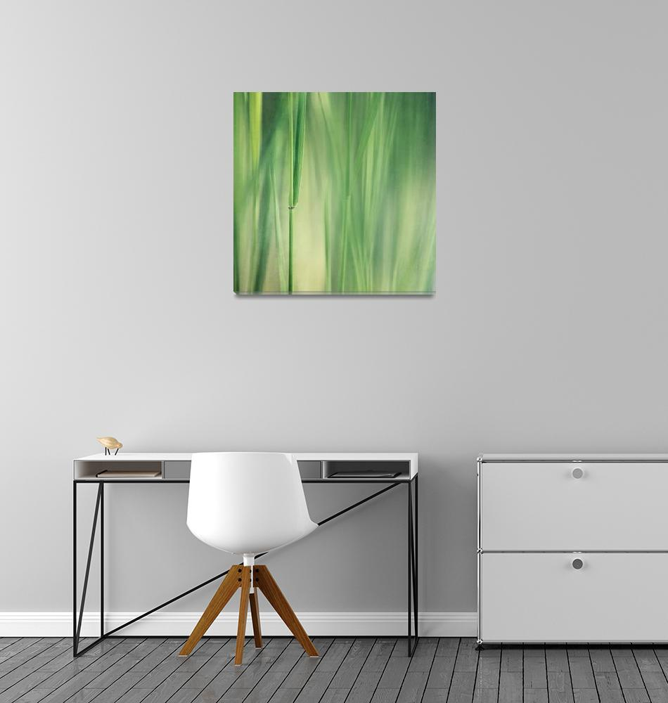 """green grass""  (2013) by Piri"