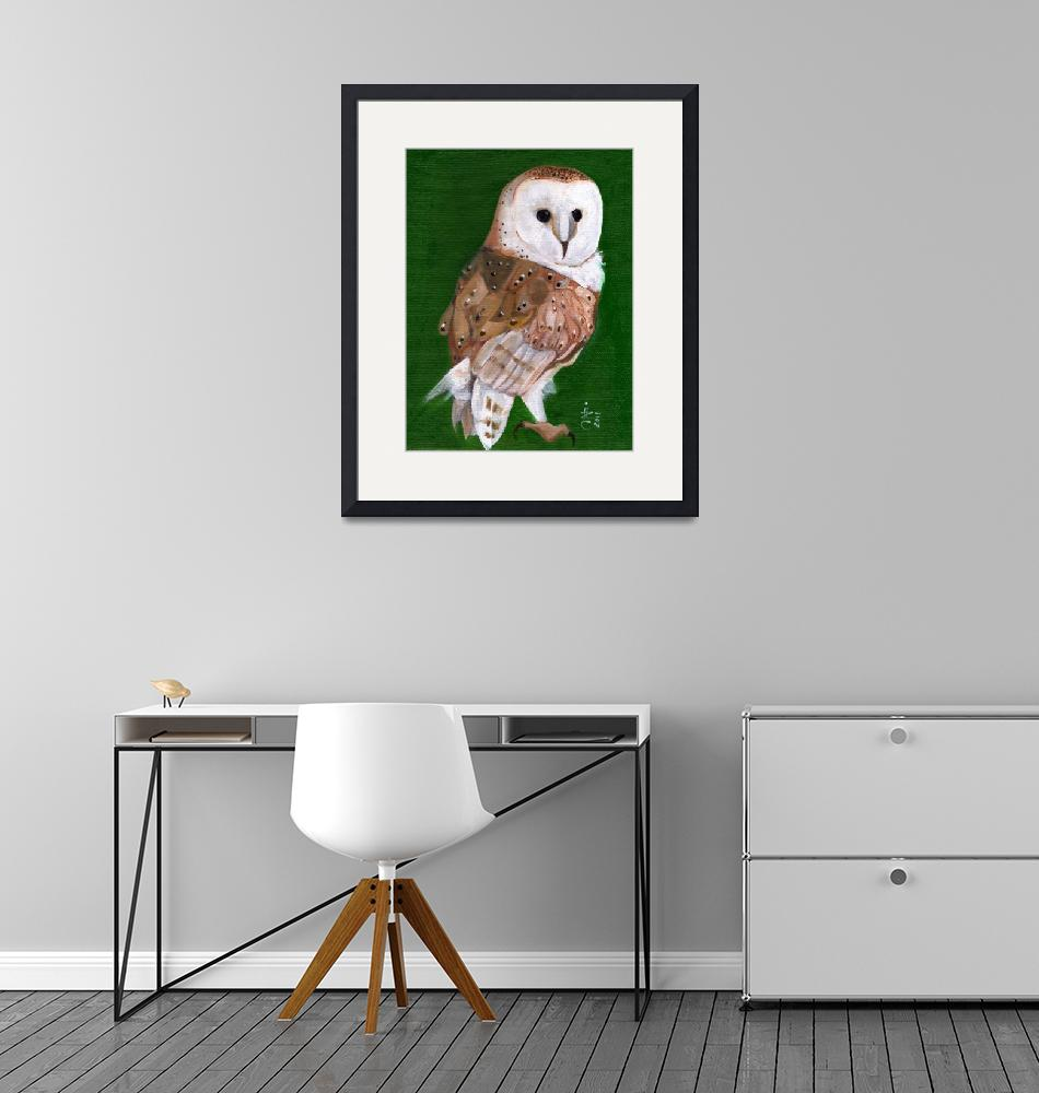"""""""Hoooo Are You - Barn Owl White Face""""  (2011) by artchiz"""