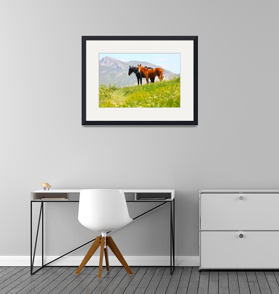 """""""Red and Black Horses in the mountains""""  by a1luha"""