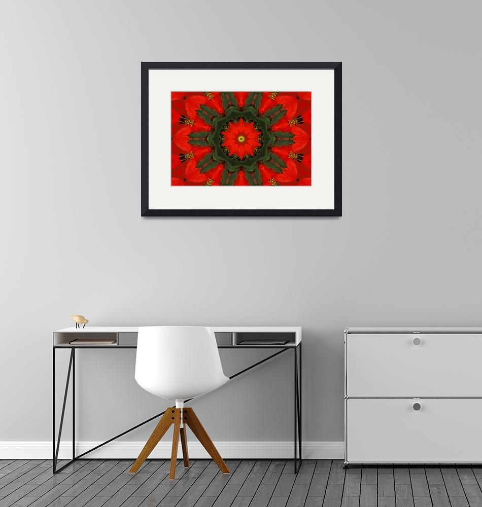 """""""Red Poinsettia Mandala - 1""""  (2010) by lightvision"""
