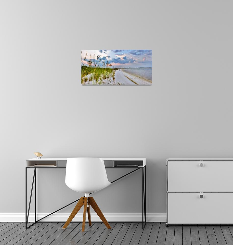 """Panoramic Landscape with Green Grass and Sea Oats""  (2010) by eszra"