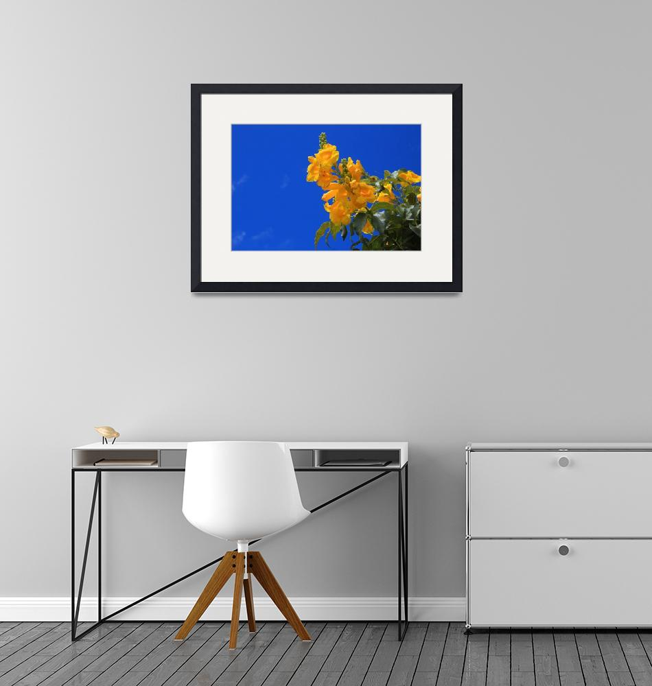 """""""Yellow Flowers and Blue Sky""""  (2016) by rhamm"""