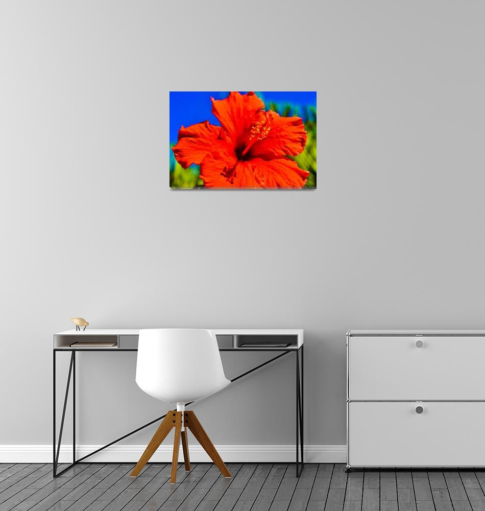 """""""Red Hibiscus""""  (2019) by mjacedesigns"""