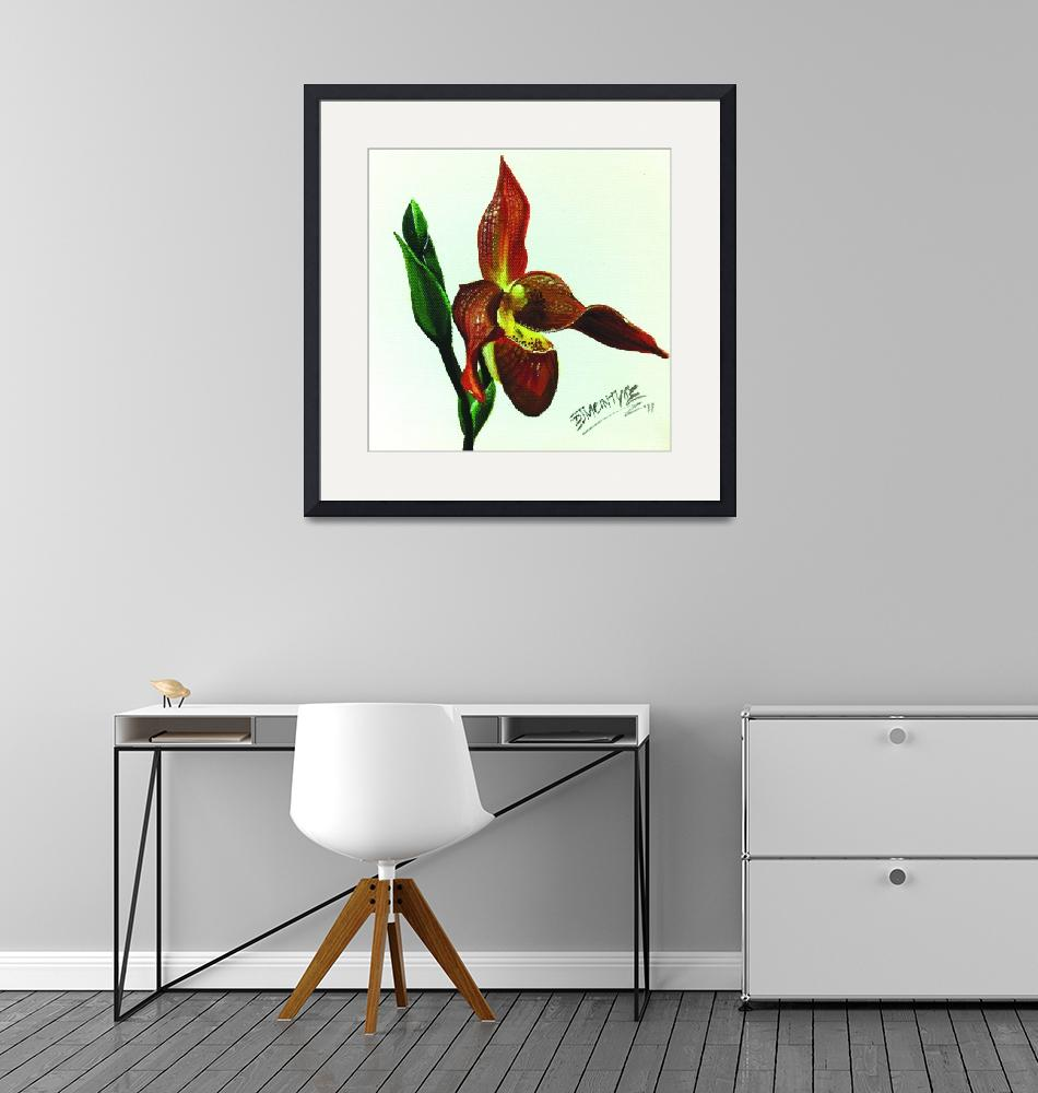 """Red Lady Slipper Orchid""  (2011) by shutterbabe"