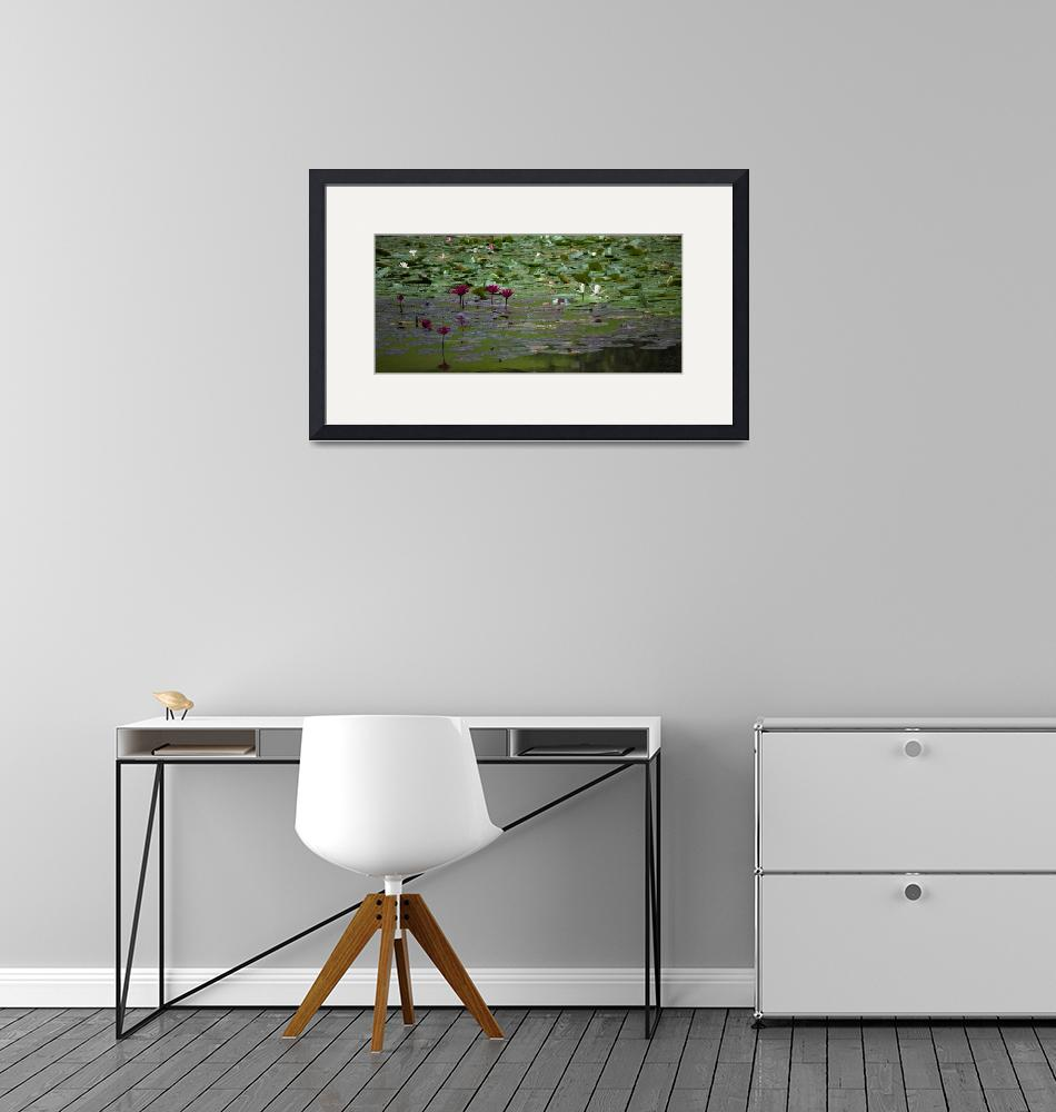 """""""MOnet? Lily Pond""""  (2018) by Mun_Sing"""
