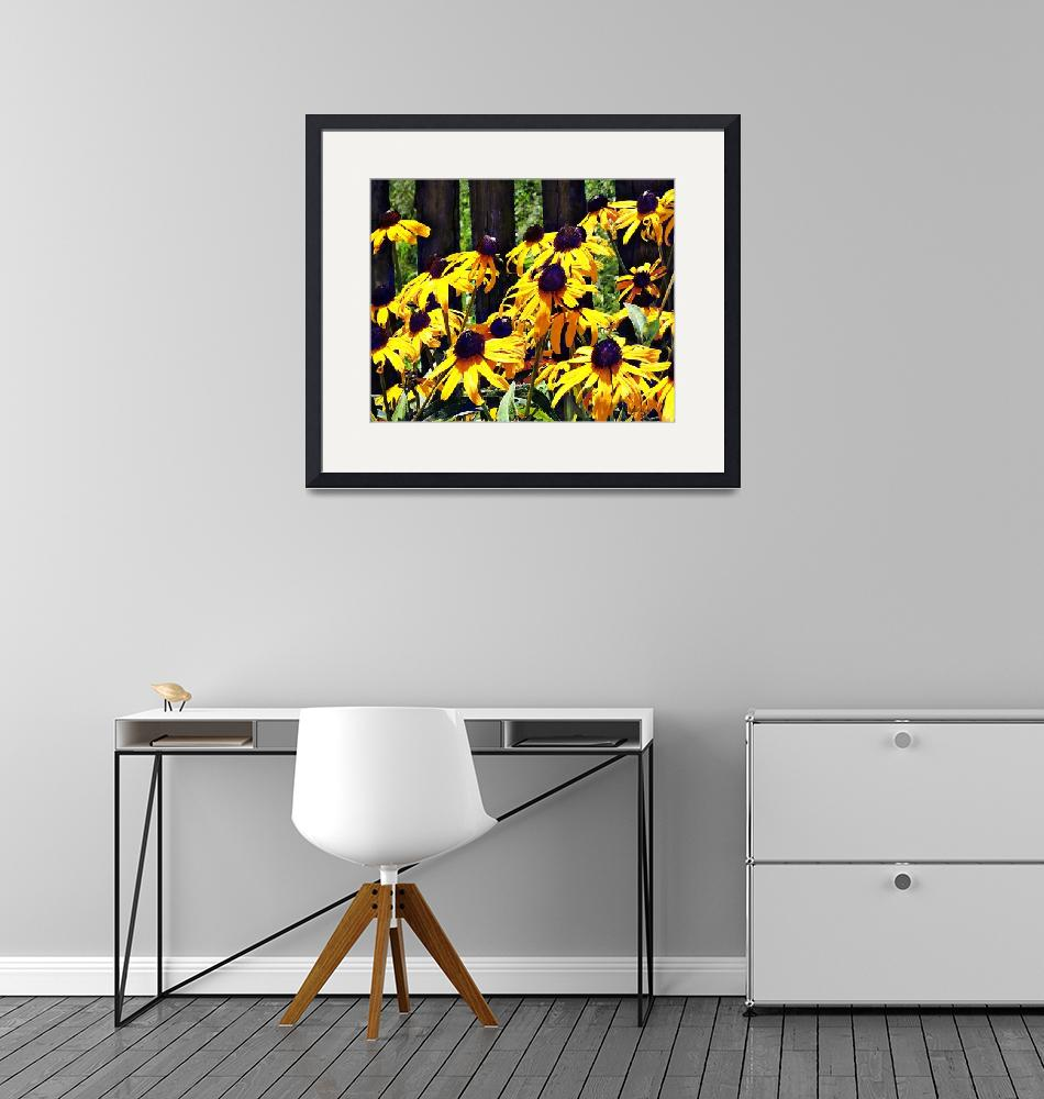 """""""Black Eyed Susans by Fence""""  by susansartgallery"""