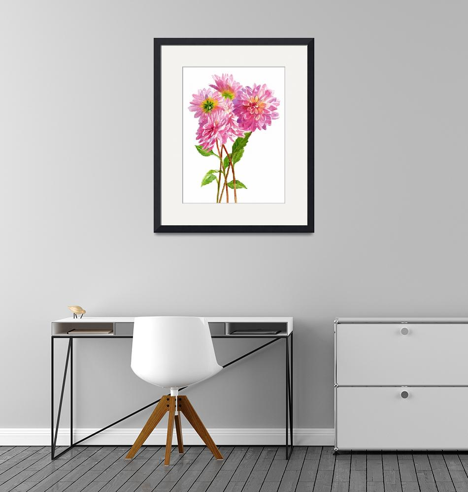 """""""Pink dahlias white background""""  (2016) by Pacific-NW-Watercolors"""