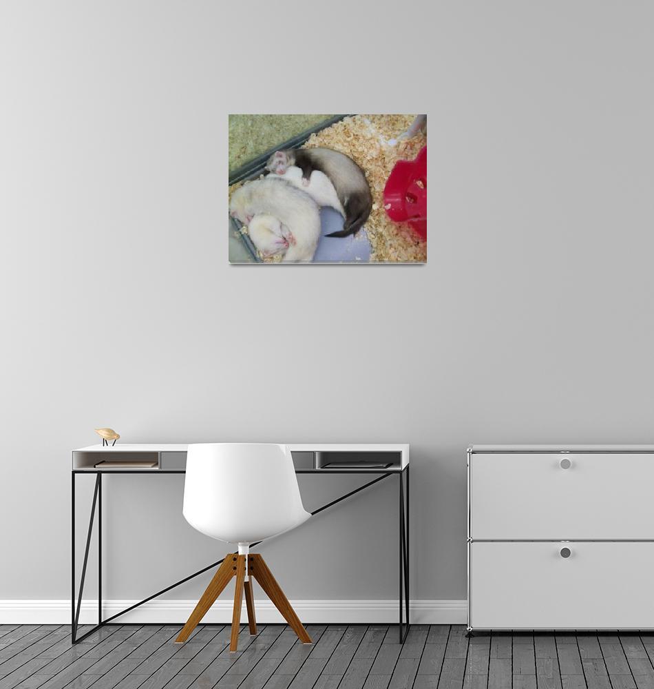 """Sleeping Ferrets""  (2013) by Starlet-art"