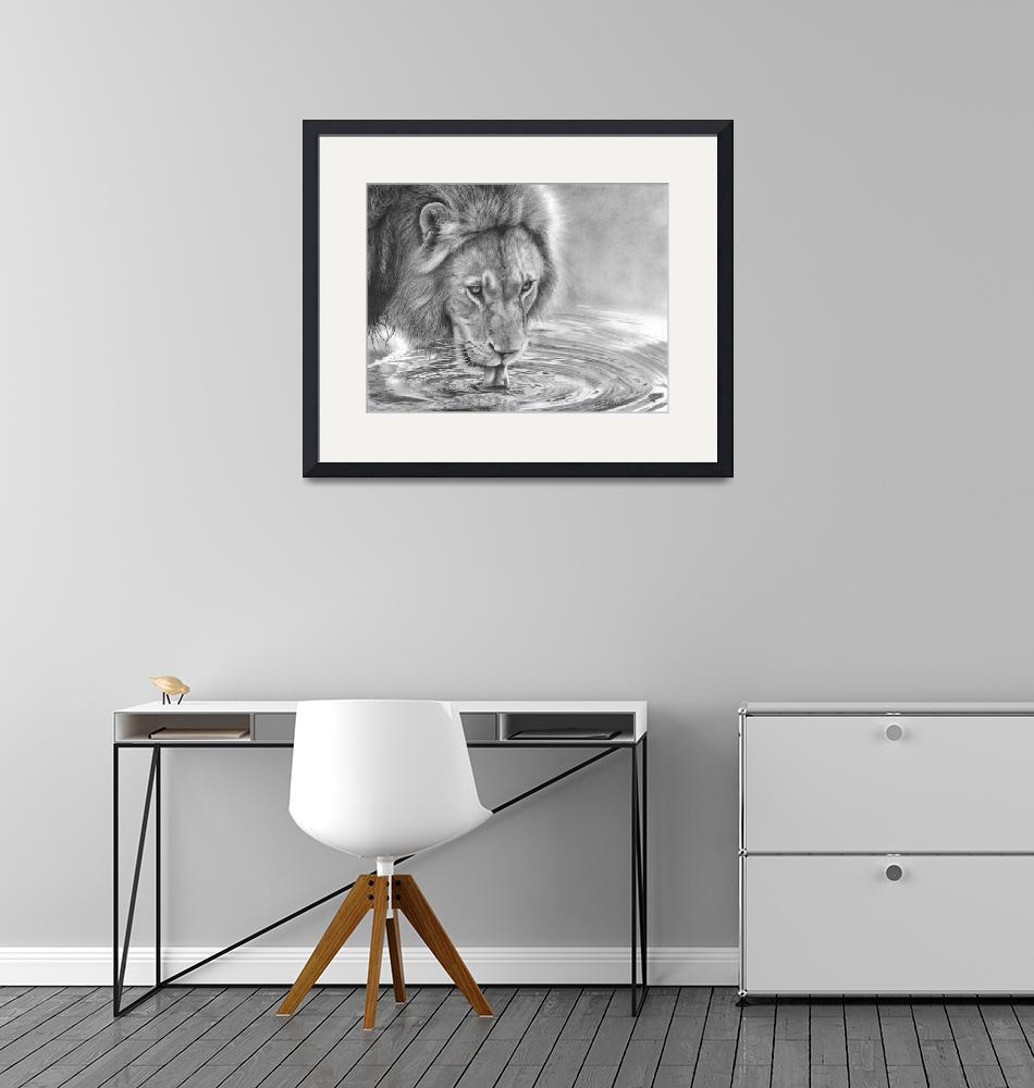 """Lapping It Up - African Wildlife - Lion""  (2018) by MightyFineArt"