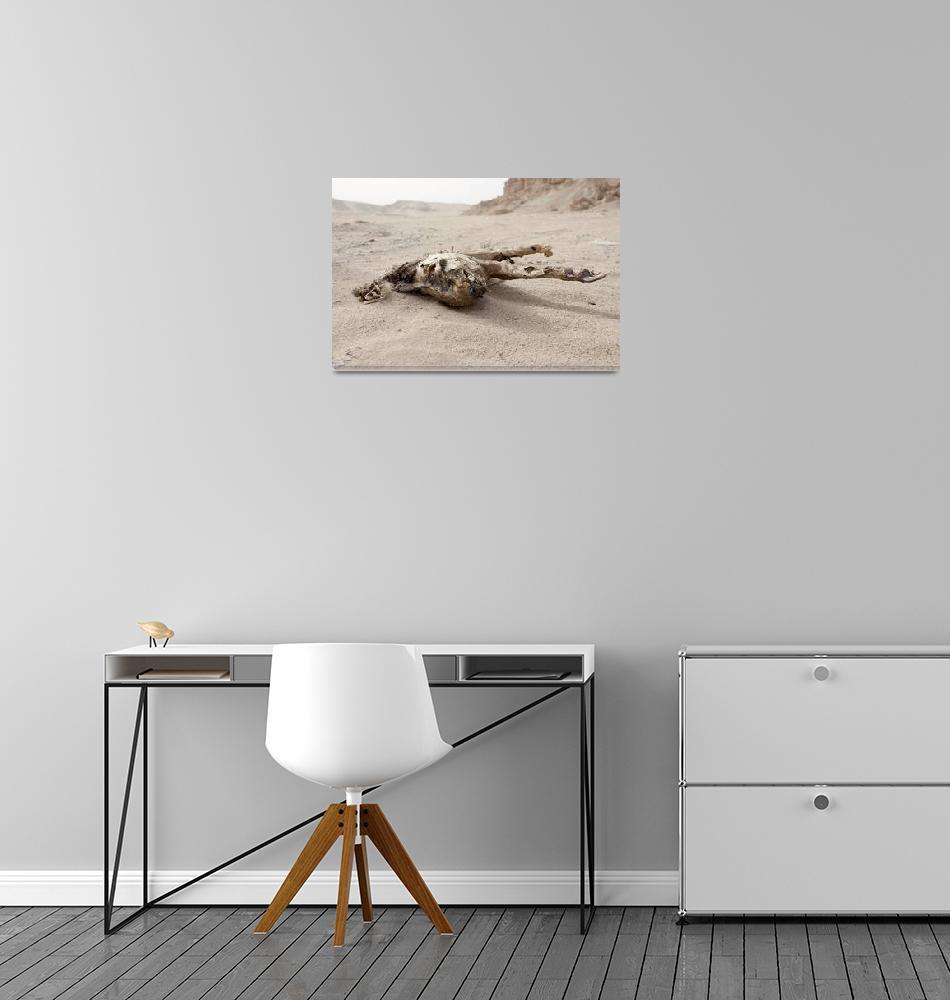 """""""Desert Badger""""  (2013) by AlexisRosasco"""