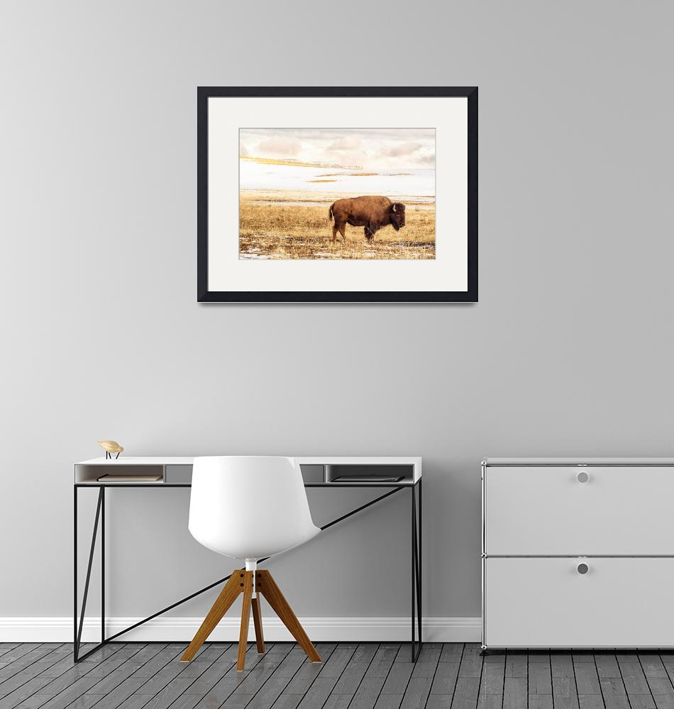 """Buffalo Stance""  (2020) by PadgettGallery"