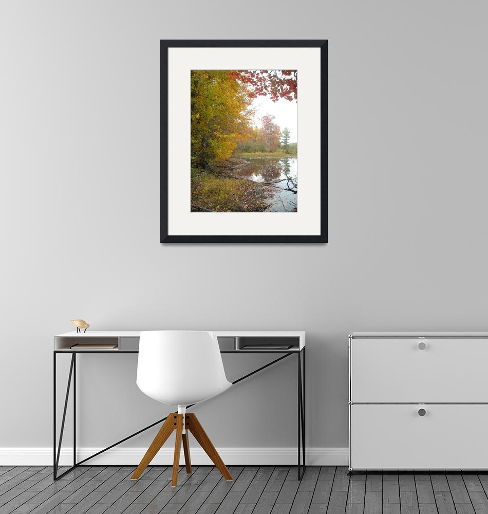 """""""New Hampshire Fall""""  (2009) by AnitaCouto"""
