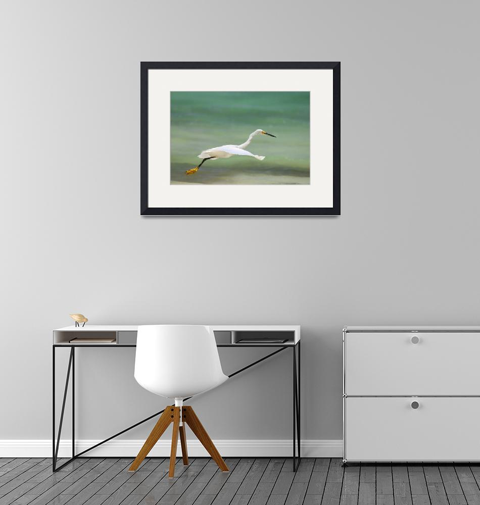 """""""Flight of the Egret""""  (2005) by JohnEdwards"""