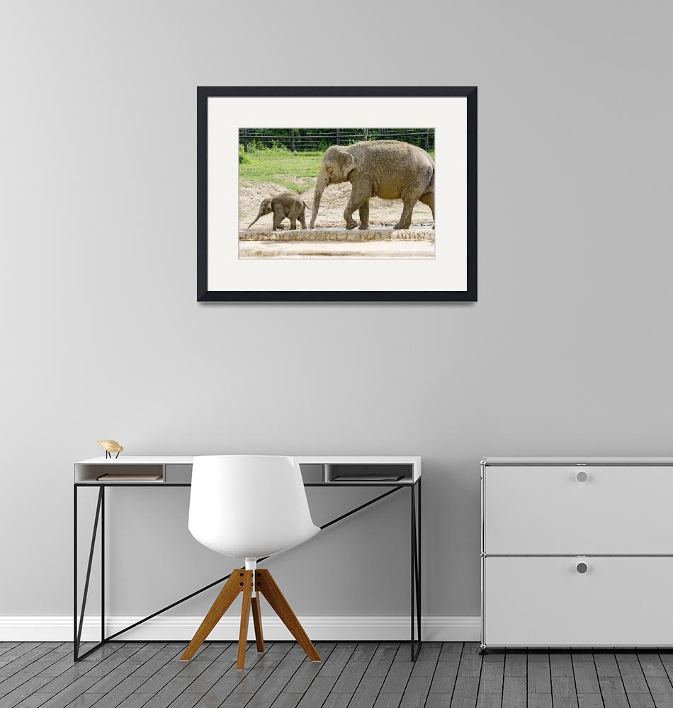 """""""Baby Elephant Beco  chased down by Phoebe for a ba""""  (2009) by artistslight"""