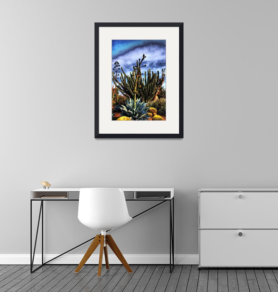 """Agave Flower and Cactus""  (2007) by johncorney"