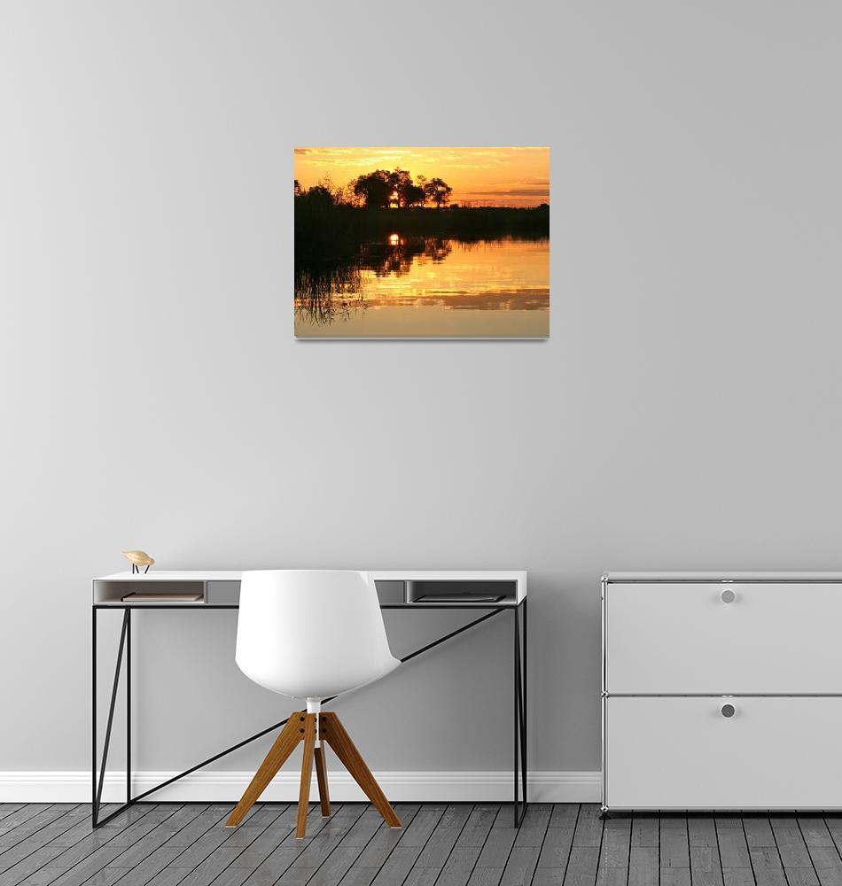 """""""Golden Sunset in Namibia""""  by KarenZukRosenblatt"""