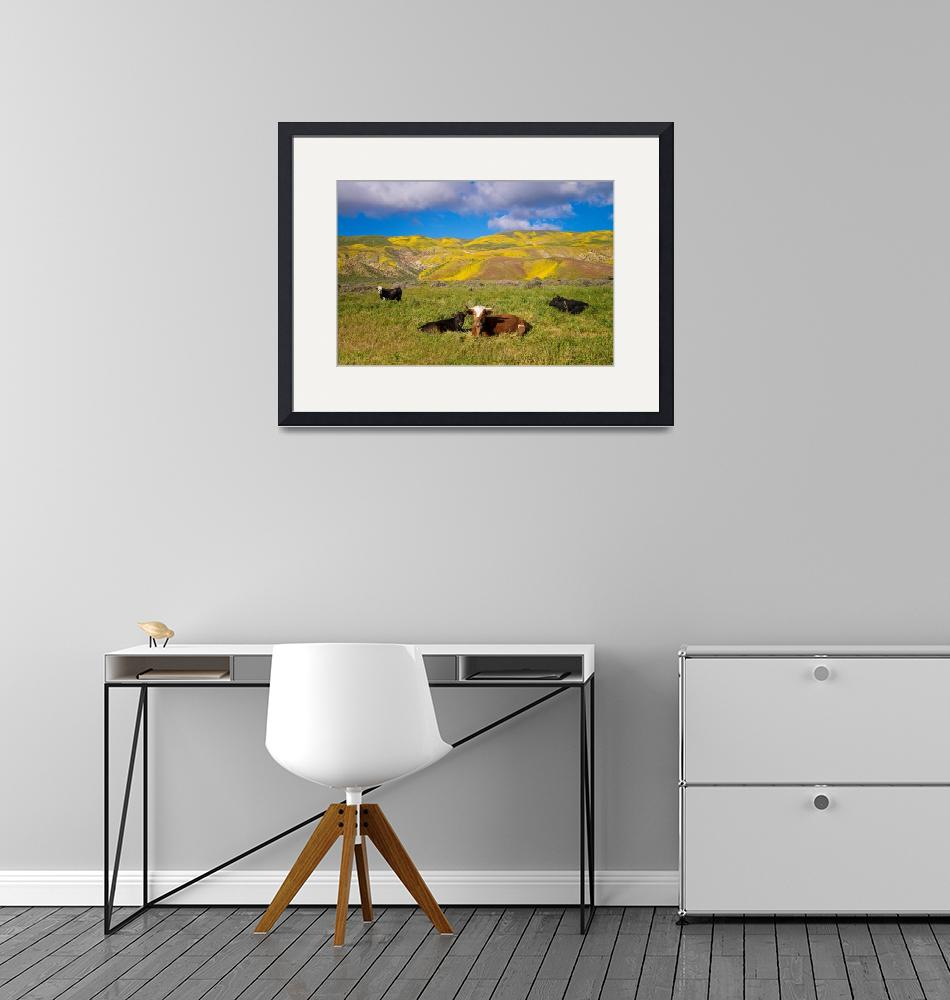 """""""Beautiful California Cow Country""""  (2017) by LynnBauer"""