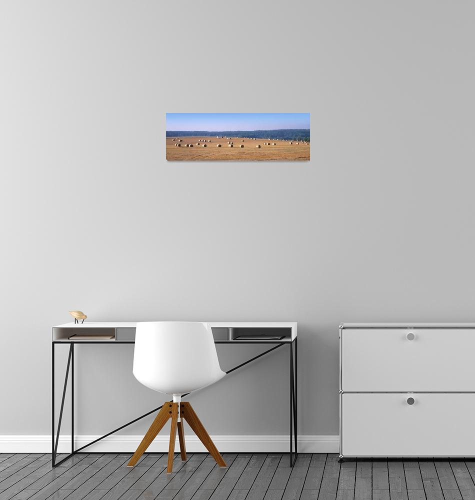 """""""Hay bales in a field""""  by Panoramic_Images"""