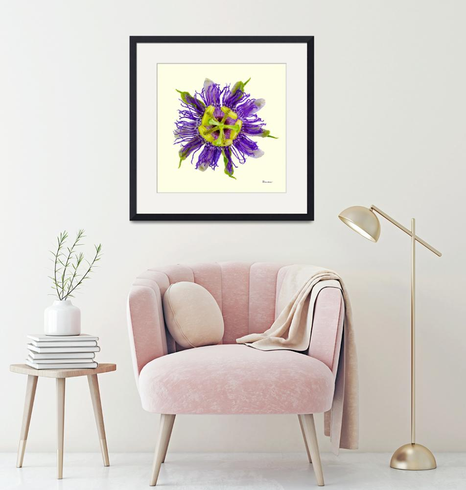 """Yellow Green and Violet Passion Flower 50674Y""  (2018) by Ricardos"