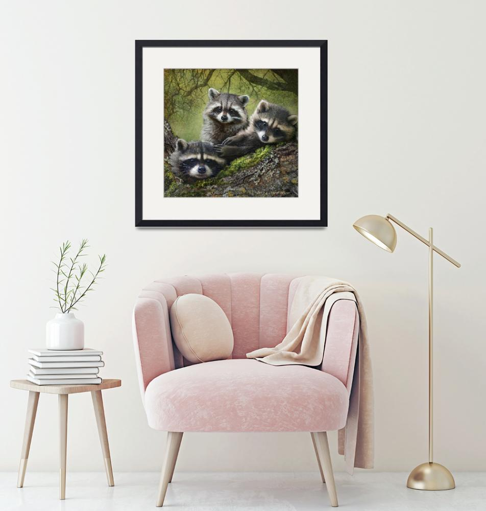 """""""raccoons as art""""  (2013) by rchristophervest"""