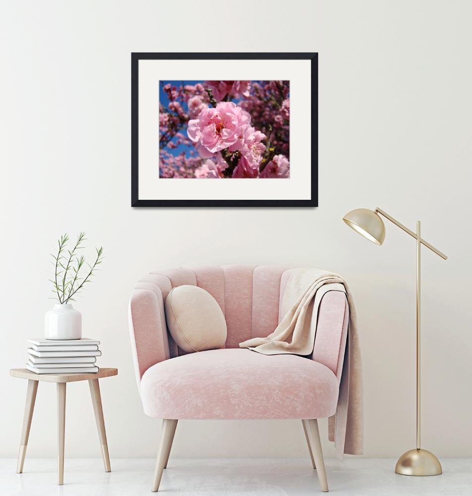 """Pink Tree Spring Blossoms art prints""  (2011) by BasleeTroutman"